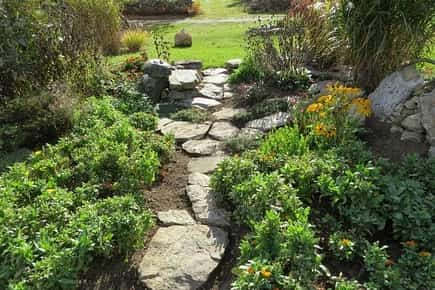 Garden stone pathway through flowers and plants